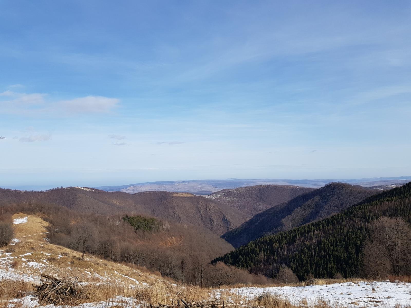 Valea Ierii - obiectiv de conservare pentru specialiști și turiști deopotrivă