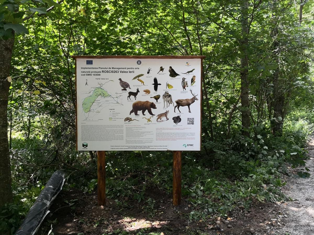 Montare panouri informative în Valea Ierii
