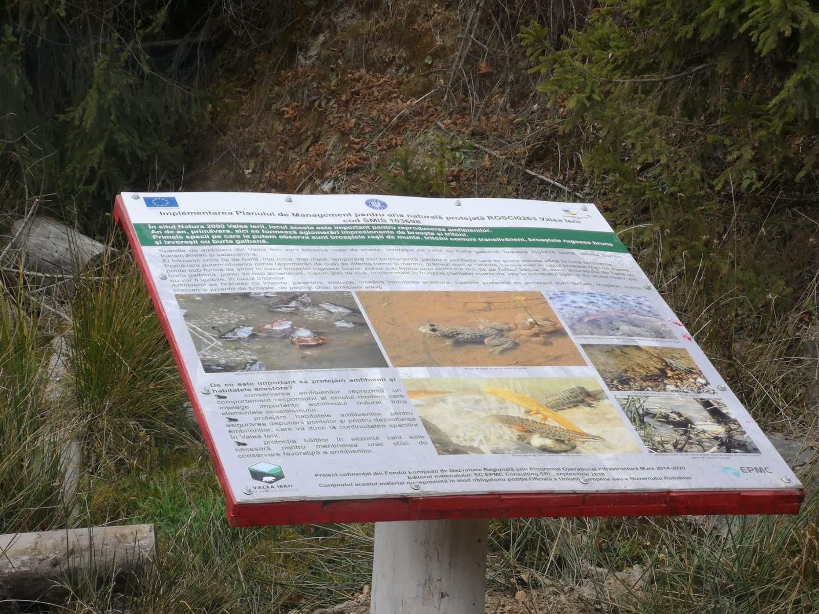 Vizită de monitorizare în ROSCI0263 Valea Ierii